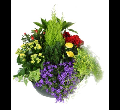 livraison de fleurs montreuil sous bois 93100 florafrance. Black Bedroom Furniture Sets. Home Design Ideas