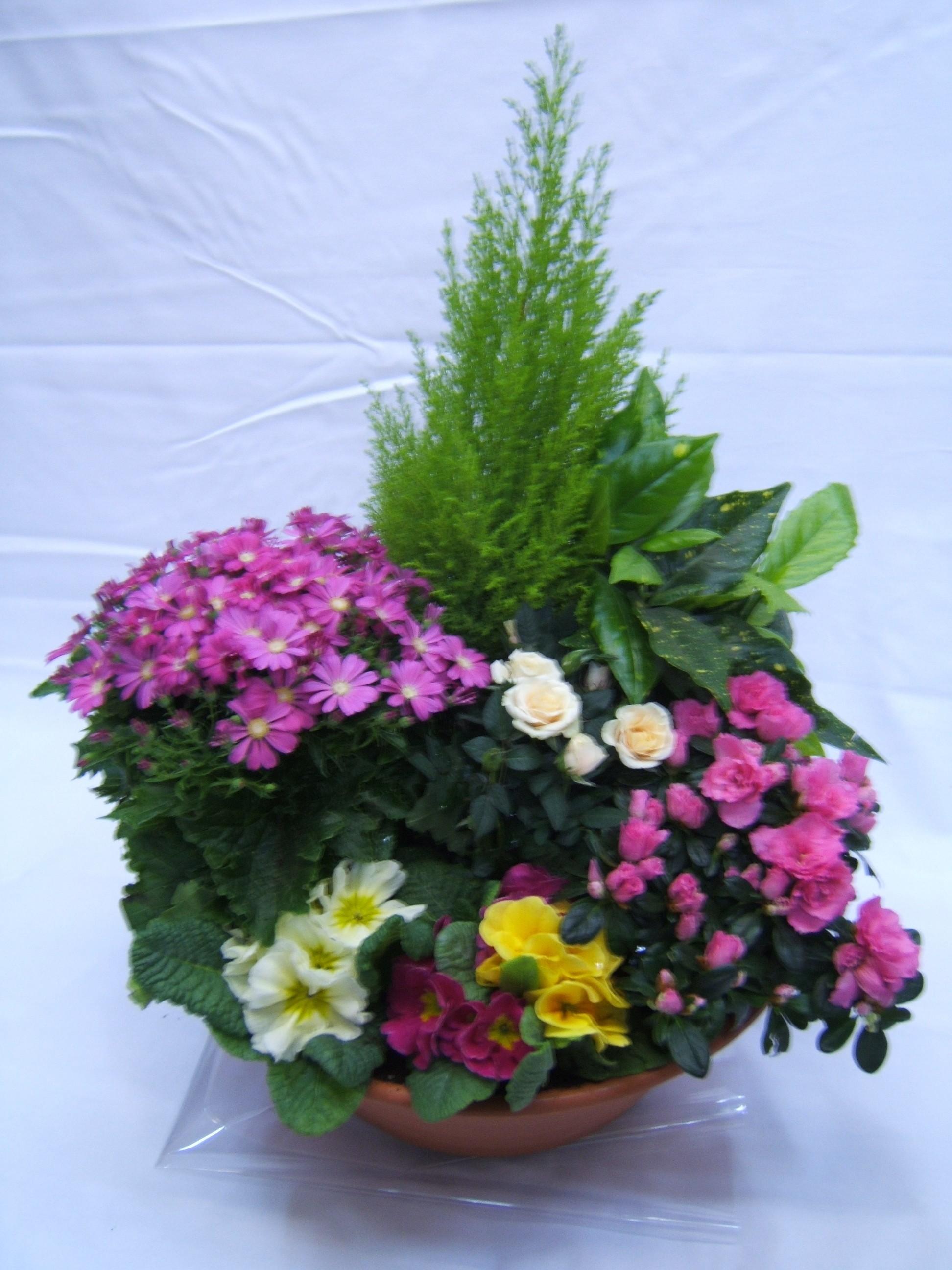 Envoi De Fleurs à ARGENTEUIL (95100)